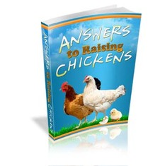 Raising Chickens Big, Best Garden, Home And DIY Tips