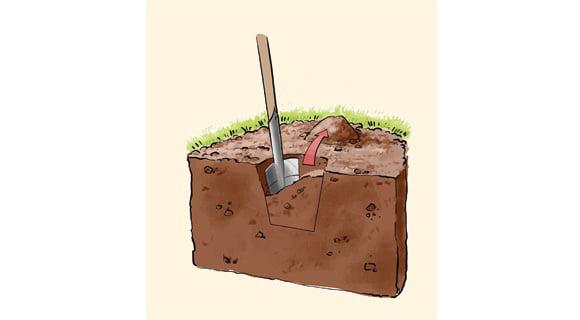 Soil Sample 1, Best Garden, Home And DIY Tips