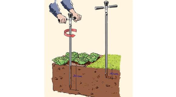 Soil Sample 3, Best Garden, Home And DIY Tips