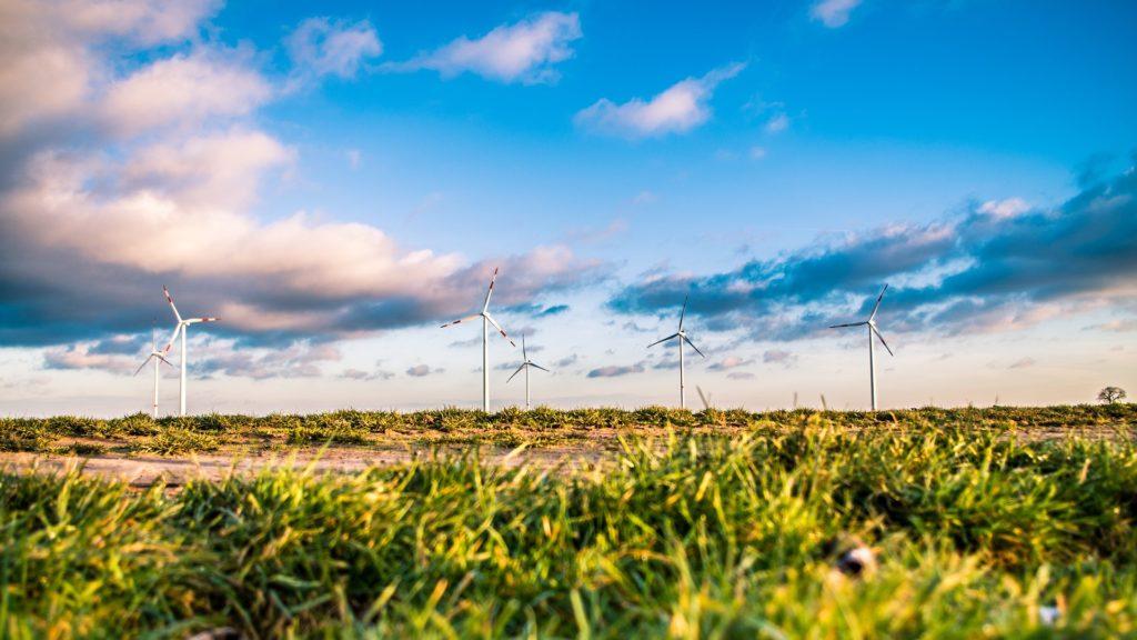 Wind Farm 1209335 1920 1024x576, Best Garden, Home And DIY Tips