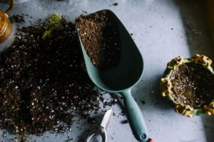 , What Makes A Good Garden Soil?, Best Garden, Home And DIY Tips