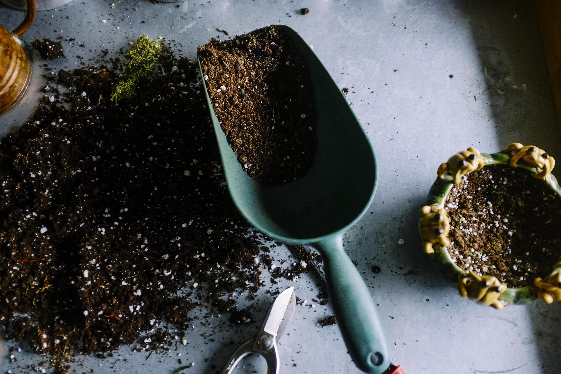 , What Makes A Good Garden Soil?, Best Garden, Home And DIY Tips