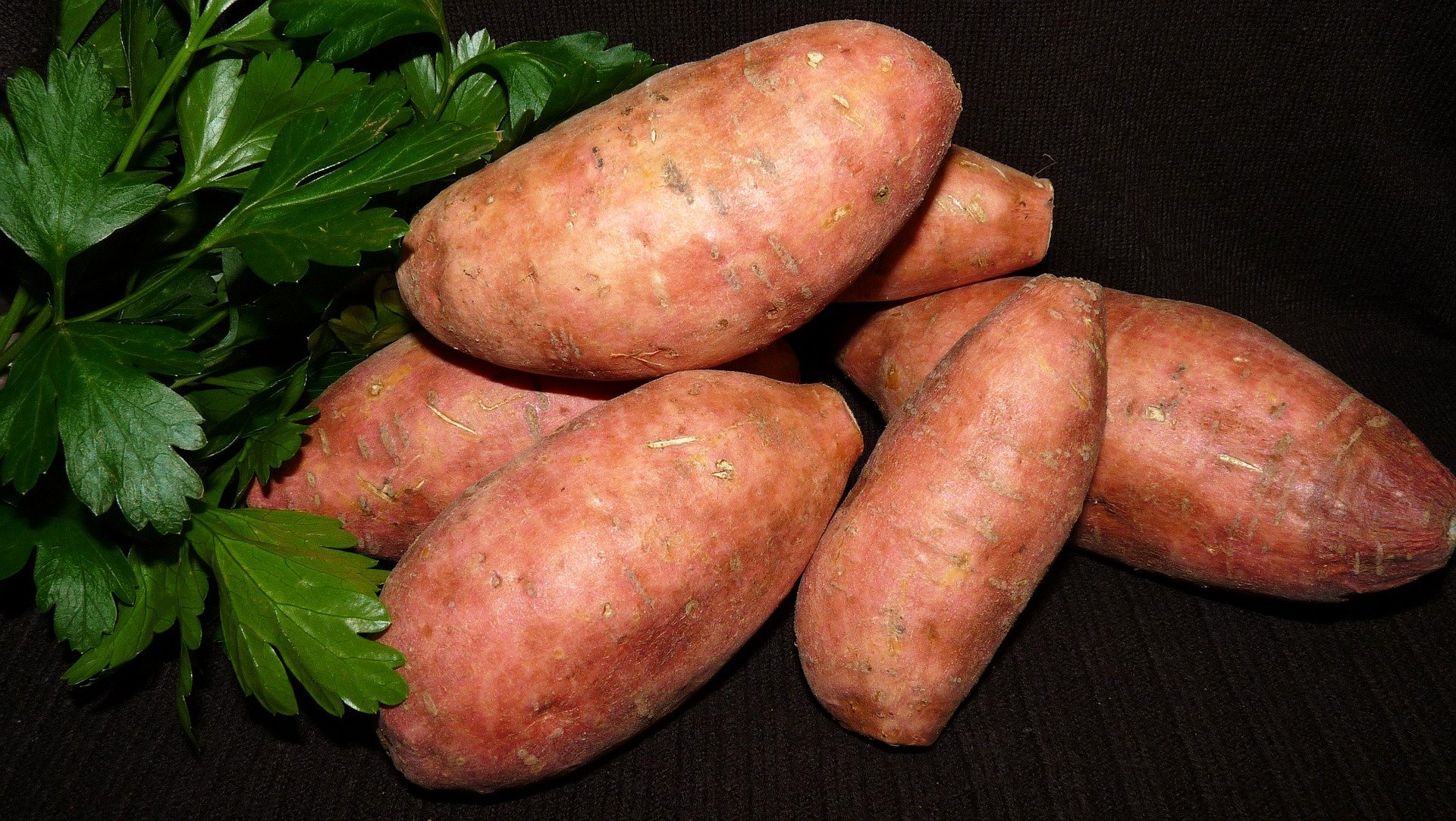 Plant Sweet Potatoes Yourself