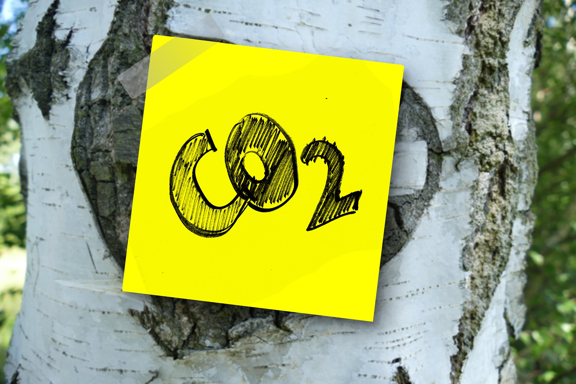 Save CO2 From Roof To Basement