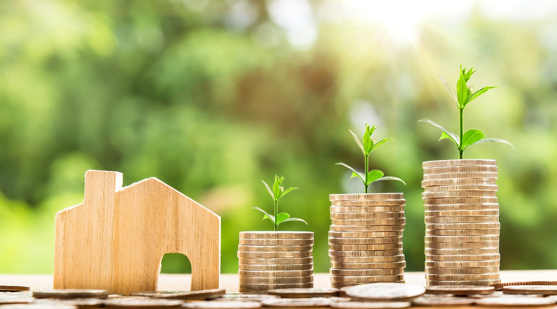 , Sustainable stocks: investing with a clear conscience, Best Garden, Home And DIY Tips