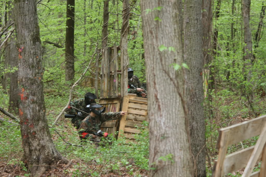 Paintball Field Layout 7, Best Garden, Home And DIY Tips