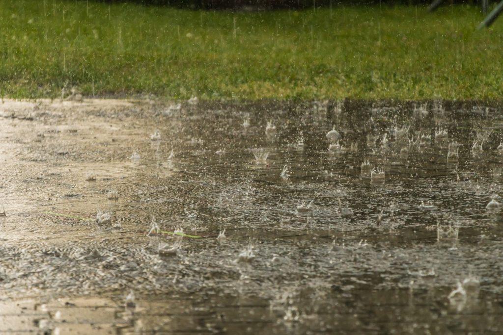 Rain 3954273 1920 1024x683, Best Garden, Home And DIY Tips